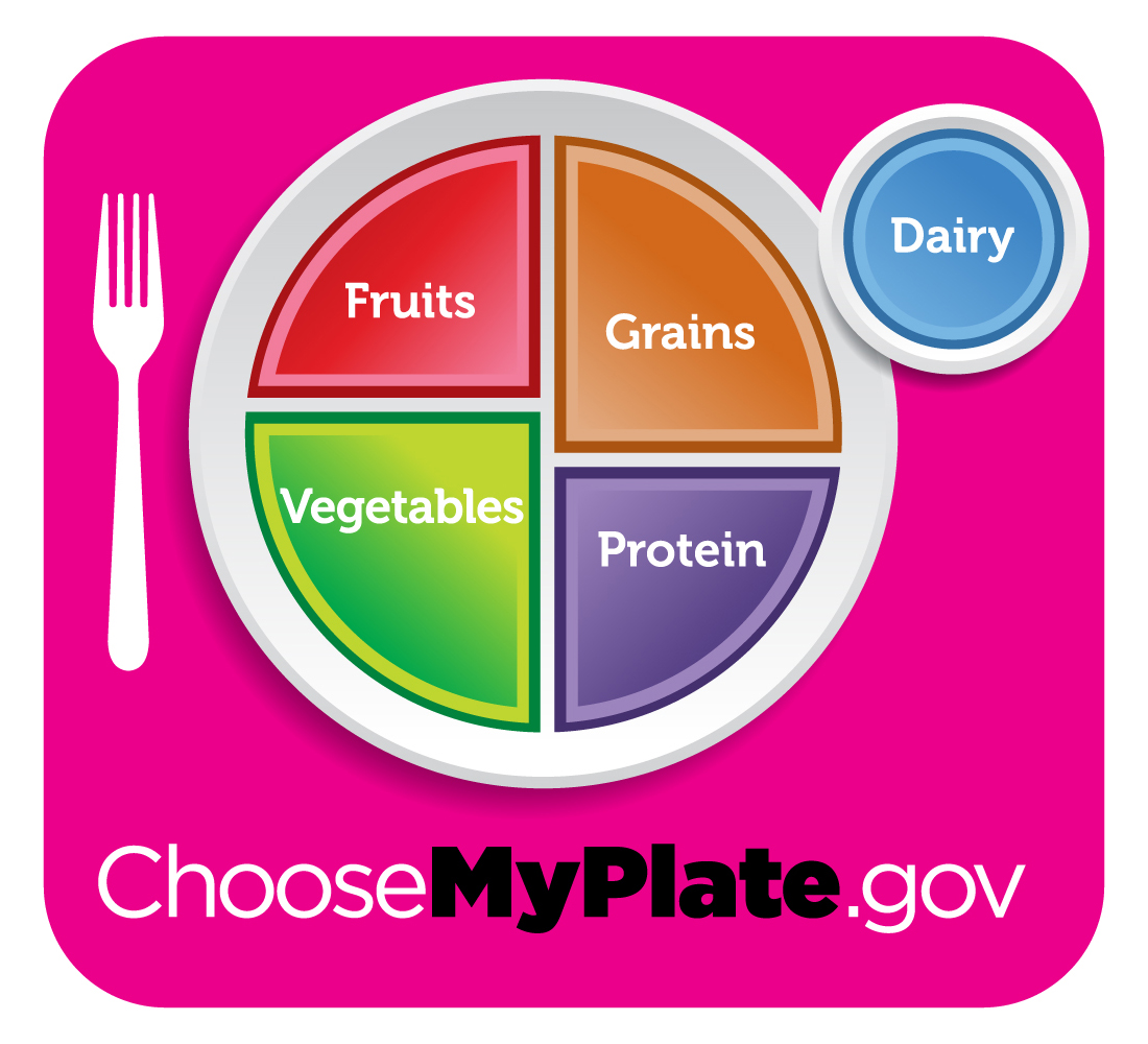 Image result for myplate
